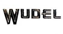 Wudel hydraulic transmission repair Kits/Parts